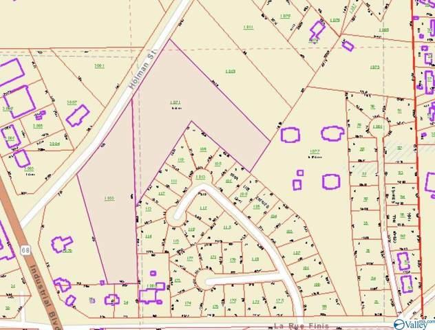 00 Holman Street, Leesburg, AL 35983 (MLS #1783233) :: Southern Shade Realty