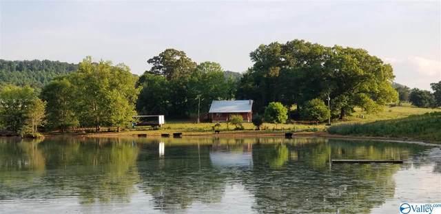 310 County Road 530, Collinsville, AL 35961 (MLS #1783289) :: Amanda Howard Sotheby's International Realty