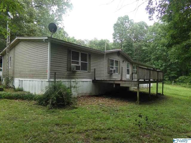 Blountsville, AL 35031 :: Green Real Estate