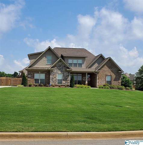 29149 Liverpoole Drive, Toney, AL 35613 (MLS #1783353) :: Coldwell Banker of the Valley