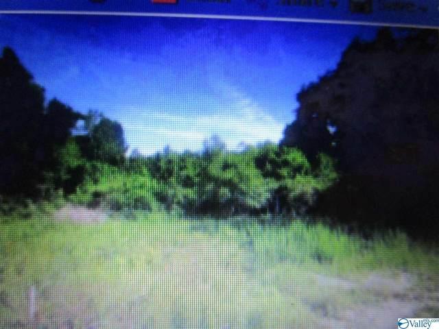 Rachel Lane, Gadsden, AL 35903 (MLS #1783357) :: MarMac Real Estate