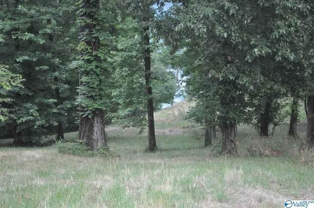 2249 Lookout Mountain Drive, Scottsboro, AL 35769 (MLS #1783367) :: RE/MAX Unlimited