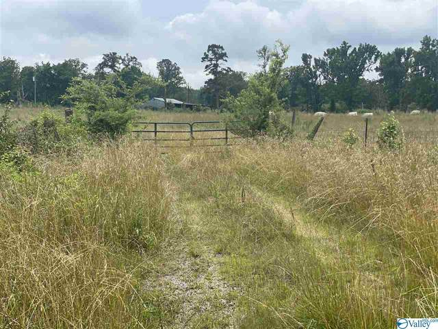 1685 Gene Brown Road, Boaz, AL 35956 (MLS #1783382) :: MarMac Real Estate