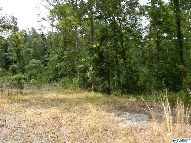 456 Keller Hollow Road, Eva, AL 35621 (MLS #1783388) :: MarMac Real Estate