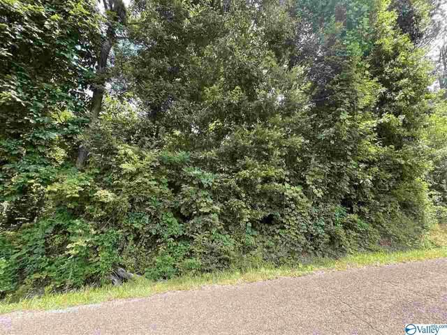 000 Davis Drive, Glencoe, AL 35905 (MLS #1783467) :: Southern Shade Realty