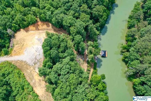 69 County Road 3018, Double Springs, AL 35553 (MLS #1783490) :: RE/MAX Unlimited
