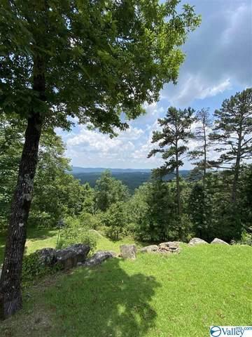 720 Mountain View Drive, Attalla, AL 35954 (MLS #1783500) :: Southern Shade Realty