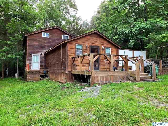 3552 County Road 11, Scottsboro, AL 35768 (MLS #1783557) :: Southern Shade Realty
