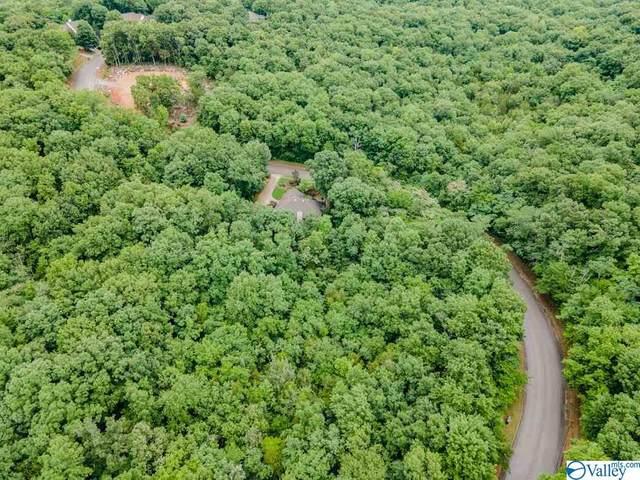 0 Oakwood Avenue, Huntsville, AL 35801 (MLS #1783562) :: Southern Shade Realty