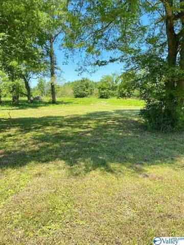 355 County Road 449, Town Creek, AL 35672 (MLS #1783582) :: Rebecca Lowrey Group