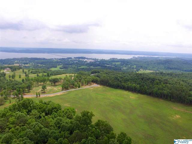 Ridgeview Trail, Guntersville, AL 35976 (MLS #1783618) :: Coldwell Banker of the Valley