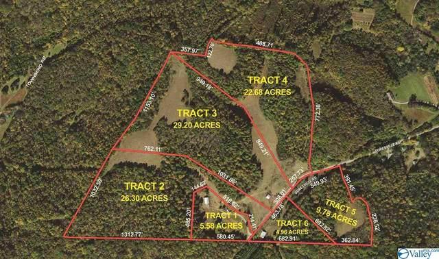 1118 Goresville Road, Prospect, TN 38477 (MLS #1783957) :: RE/MAX Distinctive | Lowrey Team