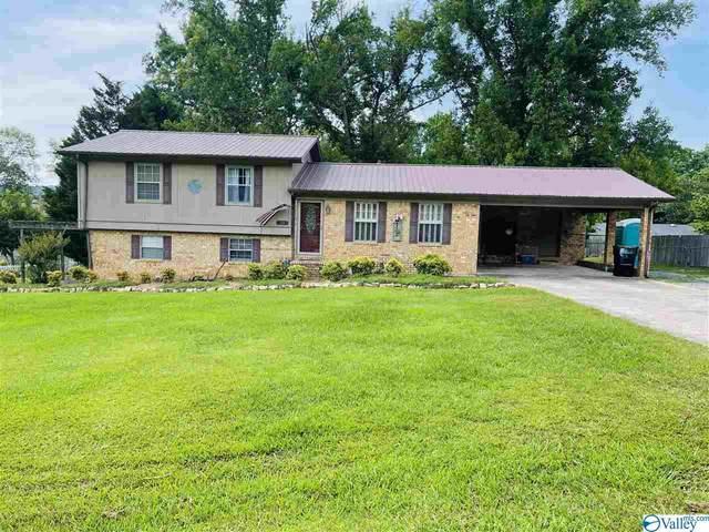 58 Sola Circle, Fort Payne, AL 35967 (MLS #1784001) :: MarMac Real Estate