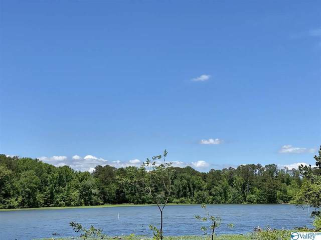 2 Goose Pond Island Drive, Scottsboro, AL 35769 (MLS #1784113) :: MarMac Real Estate