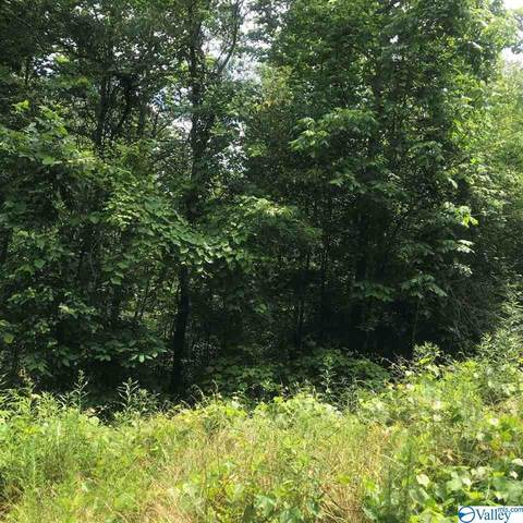 0 County Road 409, Double Springs, AL 35553 (MLS #1784162) :: RE/MAX Unlimited