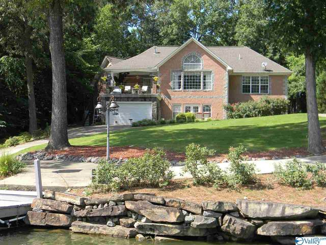 325 Frances Circle, Leesburg, AL 35983 (MLS #1784180) :: Southern Shade Realty