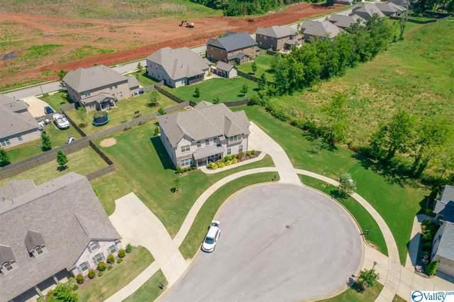 11 Brown Tulip Drive, Huntsville, AL 35824 (MLS #1784293) :: Amanda Howard Sotheby's International Realty