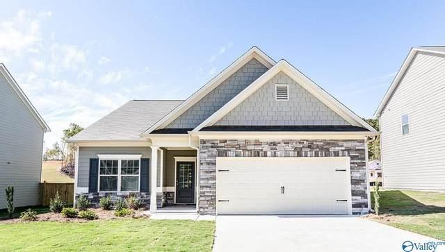 TBD Thornton Branch, Harvest, AL 35749 (MLS #1784310) :: MarMac Real Estate