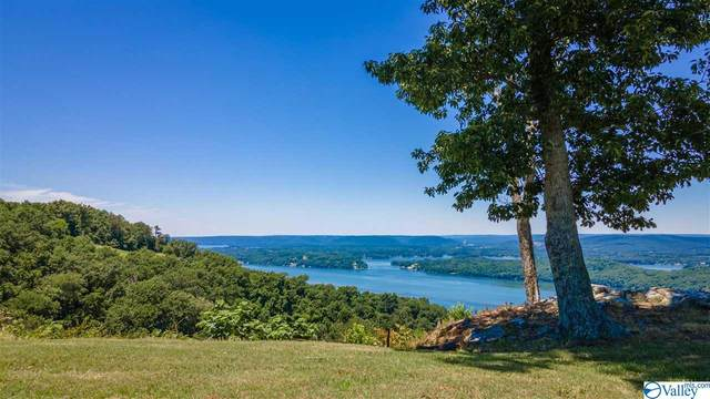 0 Scenic Drive, Section, AL 35771 (MLS #1784472) :: Rebecca Lowrey Group