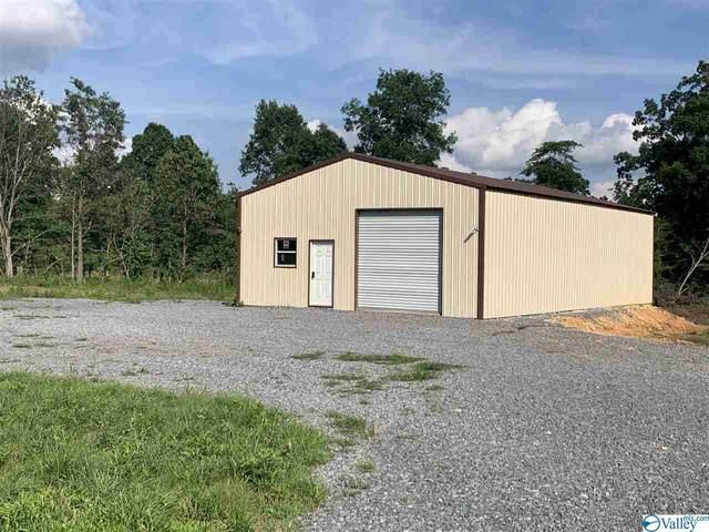 5351 County Road 141, Ider, AL 35981 (MLS #1784477) :: MarMac Real Estate