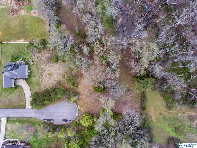 27107 Red Acres Lane, Athens, AL 35613 (MLS #1784550) :: Southern Shade Realty