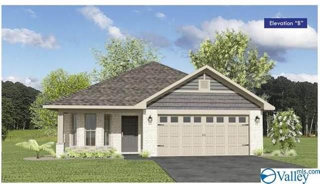 107 Sorrelweed Drive, Madison, AL 35756 (MLS #1784618) :: MarMac Real Estate