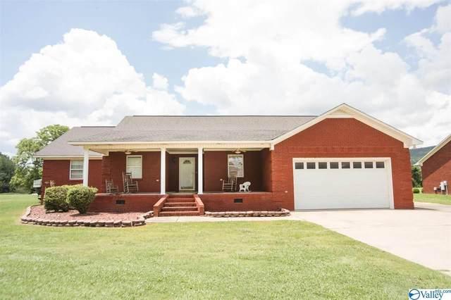 3548 Hood Lane, Southside, AL 35907 (MLS #1784660) :: Green Real Estate