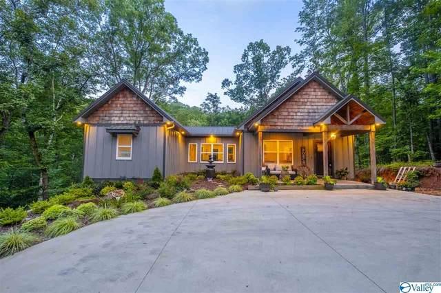 1595 Mohawk Cliff Road, Ohatchee, AL 36271 (MLS #1785064) :: MarMac Real Estate