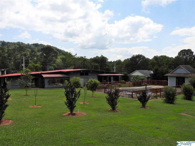 3408 Colonial Drive, Guntersville, AL 35976 (MLS #1785442) :: Green Real Estate
