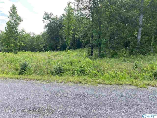 300 Oak Valley Drive, Ashville, AL 35953 (MLS #1785491) :: MarMac Real Estate