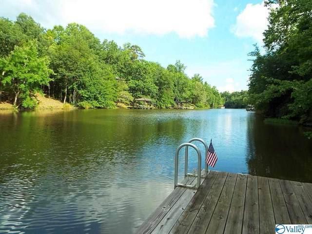 873 County Road 106, Mentone, AL 35984 (MLS #1785618) :: MarMac Real Estate