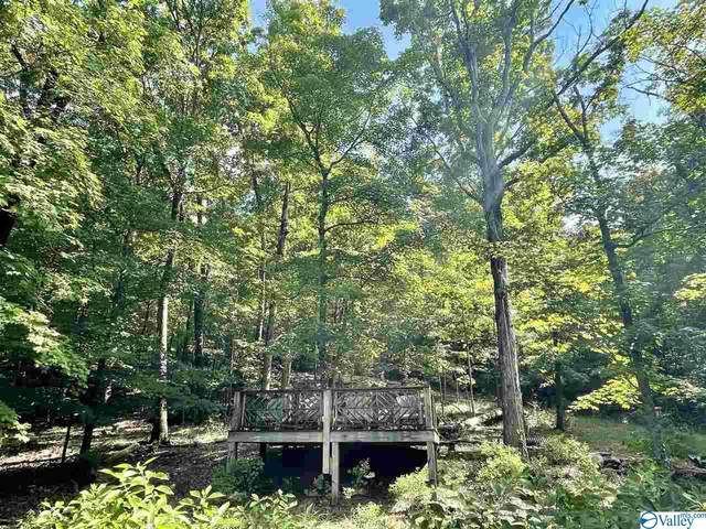 0000 Husky Mountain Road, Laceys Spring, AL 35754 (MLS #1785866) :: Rebecca Lowrey Group