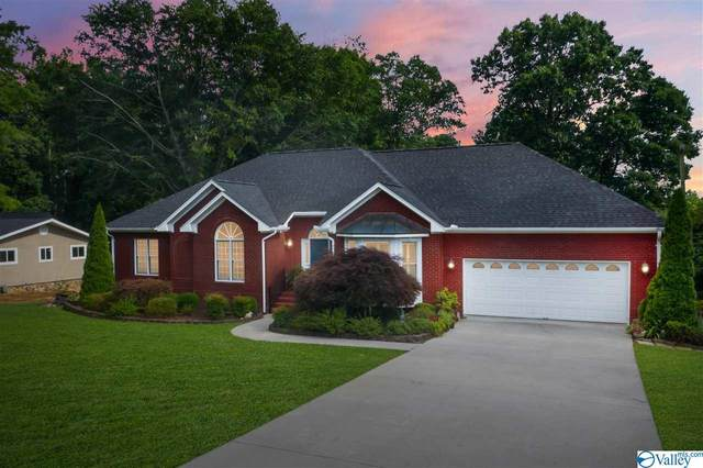 96 County Road1324, Vinemont, AL 35179 (MLS #1786043) :: MarMac Real Estate
