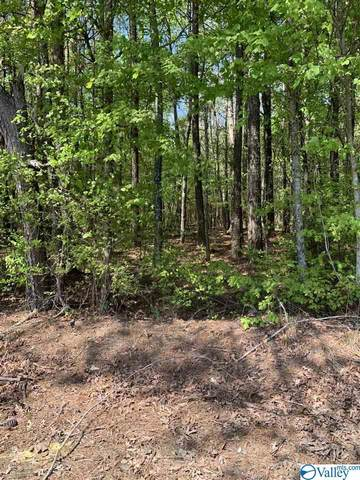 TRACT 10 Goodin Road, Elkmont, AL 35620 (MLS #1786217) :: Southern Shade Realty
