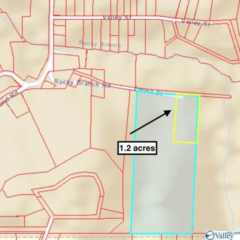 Lot 4 Rocky Branch Road, Guntersville, AL 35976 (MLS #1786321) :: Amanda Howard Sotheby's International Realty