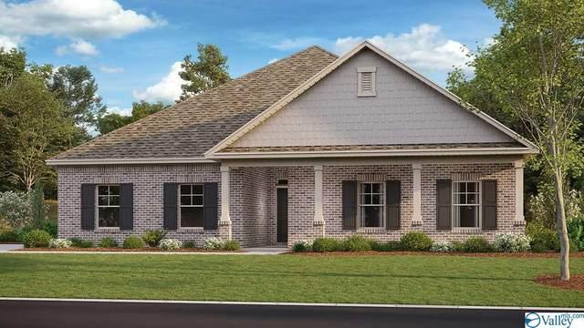 533 West River Landing Blvd, Madison, AL 35756 (MLS #1786571) :: MarMac Real Estate