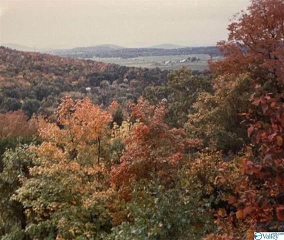 1318 Chandler Road, Huntsville, AL 35801 (MLS #1786575) :: Rebecca Lowrey Group