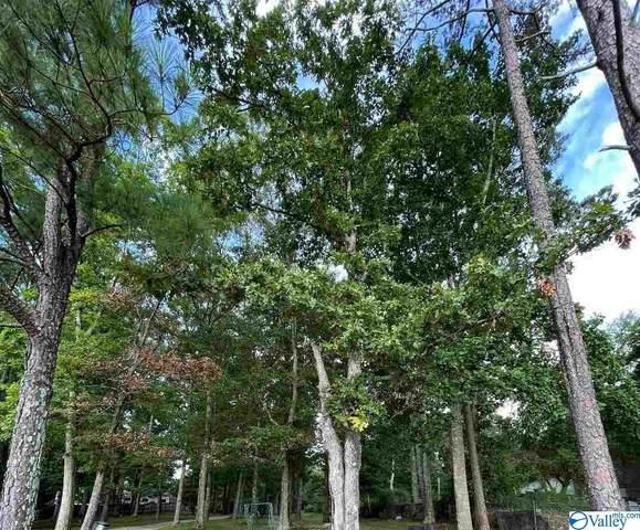 00 County Road 91, Rogersville, AL 35652 (MLS #1786588) :: MarMac Real Estate