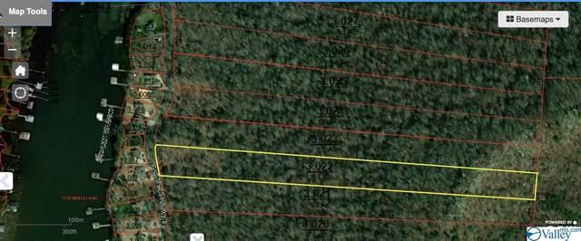 0 White Elephant Road Lot 4, Grant, AL 35747 (MLS #1786635) :: MarMac Real Estate