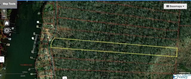 0 White Elephant Road Lot 5, Grant, AL 35747 (MLS #1786636) :: MarMac Real Estate