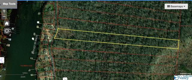 0 White Elephant Road Lot 6, Grant, AL 35747 (MLS #1786637) :: Coldwell Banker of the Valley