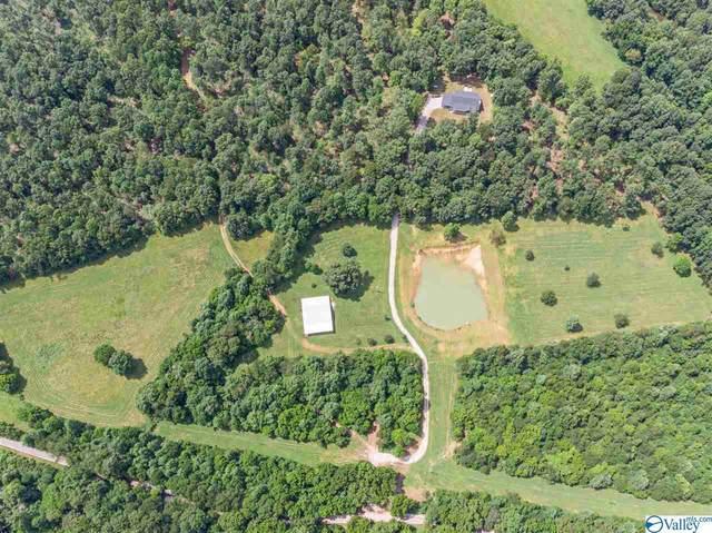 339 Clear Creek Road, Leoma, TN 38468 (MLS #1786710) :: RE/MAX Unlimited