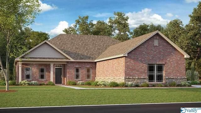 279 Northlake Drive, Meridianville, AL 35759 (MLS #1786713) :: Green Real Estate