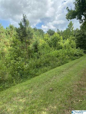 Norman Lane, Elkmont, AL 35620 (MLS #1786734) :: Southern Shade Realty