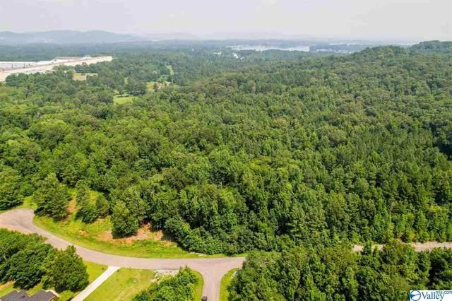 00 Lookout Mountain Drive, Scottsboro, AL 35769 (MLS #1786865) :: RE/MAX Distinctive | Lowrey Team
