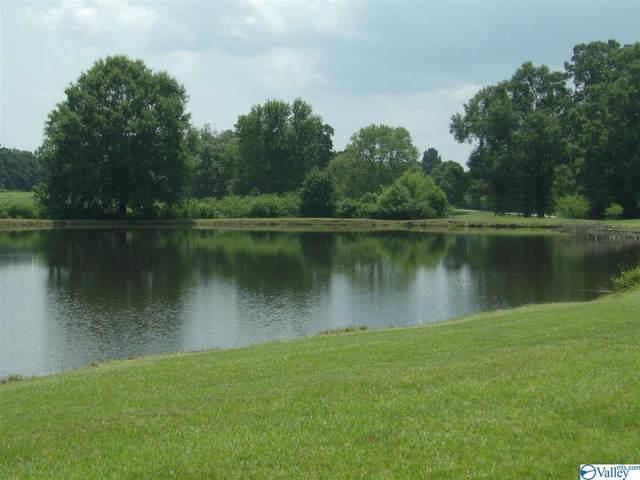 241 N Canoe Creek Road, Attalla, AL 35954 (MLS #1786867) :: Green Real Estate