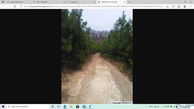 0 County Road 261, Town Creek, AL 35672 (MLS #1787009) :: MarMac Real Estate