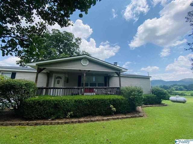 6540 Alabama Highway 35, Gaylesville, AL 35973 (MLS #1787071) :: RE/MAX Distinctive | Lowrey Team