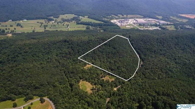 0 County Road 606, Valley Head, AL 35989 (MLS #1787076) :: RE/MAX Distinctive | Lowrey Team