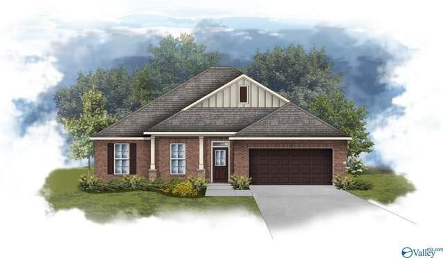 171 Creek Ridge Drive, Meridianville, AL 35759 (MLS #1787203) :: RE/MAX Distinctive   Lowrey Team